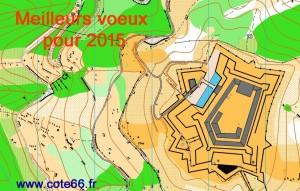 VoeuxCO2015